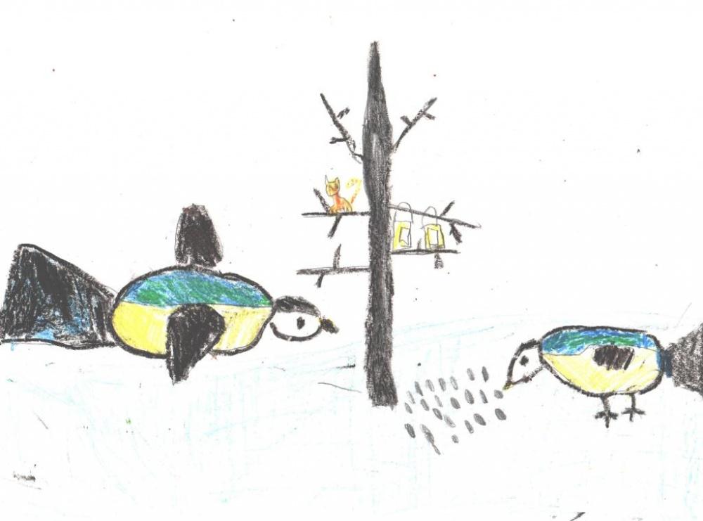 зачем синицы клюют москитную сетку