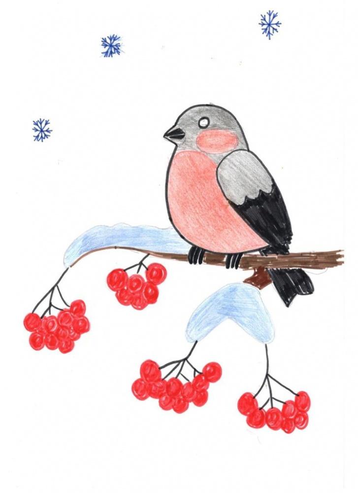 при рисунки карандашом снегирь на ветке внука брежнева